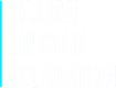 Lillian Lincoln Foundation logo